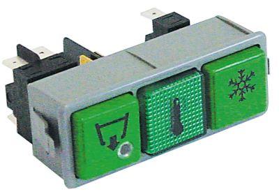 συνδυασμένοι διακόπτες διαστ. τοποθέτ. 28,5x77,5mm πράσινο 2NO/1NO/ενδεικτική λυχνία 250V