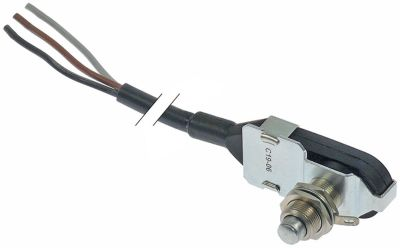 microswitch with plunger  250V 5A thread M12 connection cable thread L 17mm type 83733