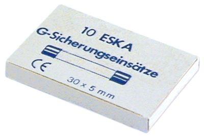 ασφάλεια βοηθητικού κυκλώματος μέγεθος ø5x30mm  10A ταχείας ενέργειας ονομαστική τιμή 500V