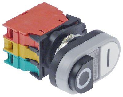 στιγμιαίος διακόπτης start ø22mm  ενδεικτική λυχνία 24V μαύρο/λευκό