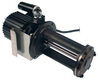αντλία λαδιού BRINKMANN  τύπος TB16/170-GZX+581  70W 230V 50Hz Μ 300mm 960l/h πυκνωτής 5µF