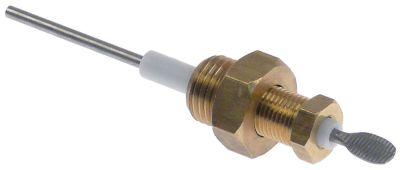 ηλεκτρόδιο στάθμης με σπείρωμα συνολικό μήκος 88mm Μ αισθητηρίου 34mm σπείρωμα M10x1  ø 2,5mm